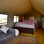 Polentswa Tented Camp | Luxury 5 Star Classic  Kgalagadi Tour