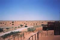Kielie Krankie  | Tour B: Kgalagadi Transfrontier Park 4 Days Tour