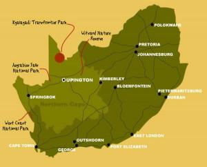 Map to Kgalagadi Transfrontier Park | Kalahari Safaris | Kgalagadi, Augrabies & Desert Tours