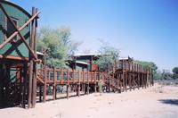 Urikaruus  | Tour B: Kgalagadi Transfrontier Park 4 Days Tour